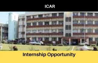Internship opportunity at ICAR, Apply Now, Stipned 5000 Per Month, Division of Genetics