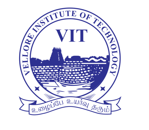 "VIT Workshop ""Data Science and Advanced Computing"""